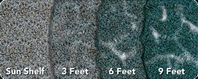 pti depthchart ps bluegranite 279x150px1