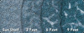 pti depthchart ps bluesurf 279x150px1