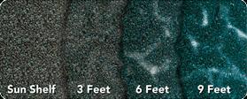 pti depthchart ps turtlebay279x150px1
